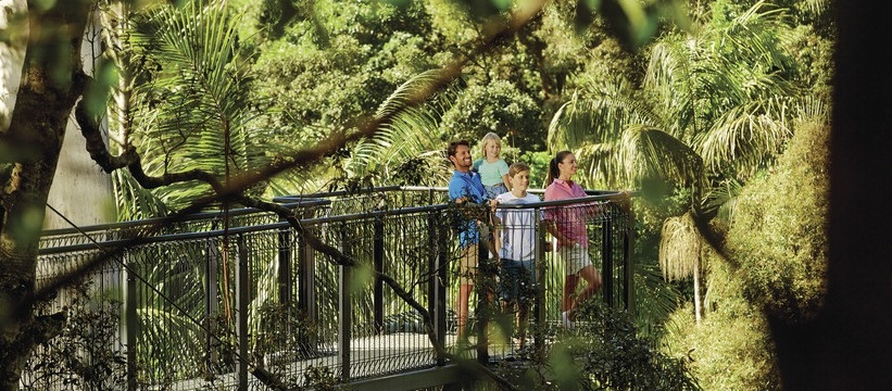 a family doing the Mount Tambourine gallery walk
