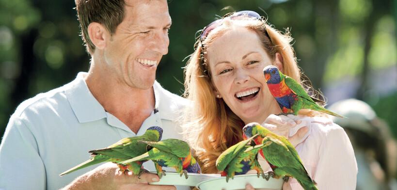 a couple hand feeding the birds at Currumbin Wildlife Sanctuary