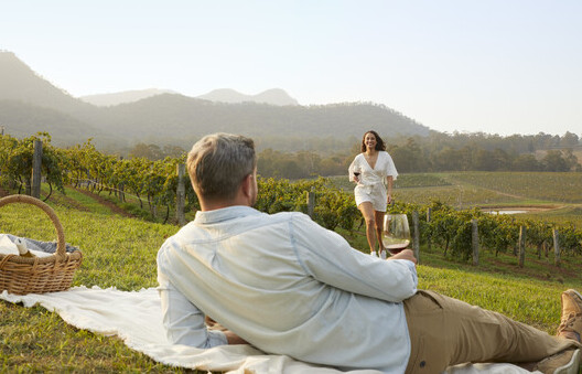 a couple having a picnicamong the vineyards