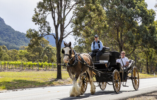a couple enjoying a horse and carriage tour around the wineries