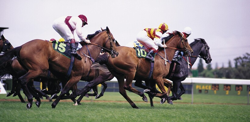 Horses racing at the annual Melbourne Cup carnival, which is known as 'the race that stops a nation'.