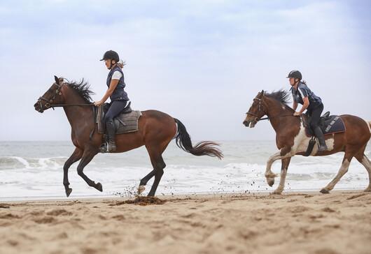 People horseback riding on the beach