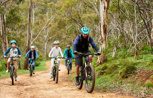 A group of people mountain bike riding in Cleland Conservation Park in the Adelaide Hills
