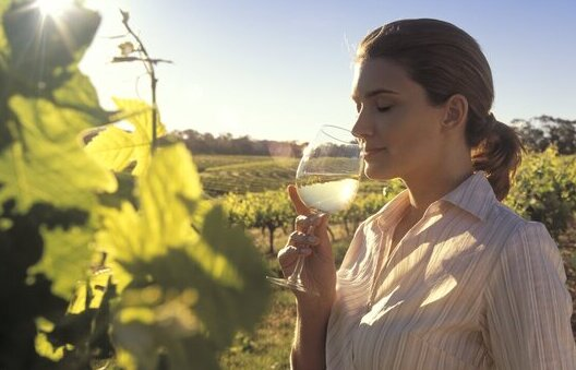 A woman sipping a glass of wine at one of Adelaide's vineyards