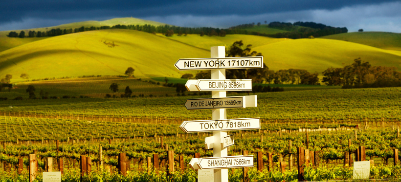 The Barossa Valley has rolling hills and stunning scenery