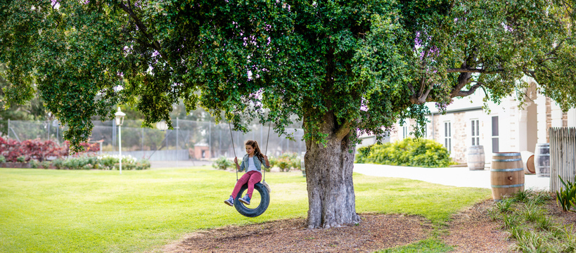 a child on a swing hanging from. tree at the Barossa Château.