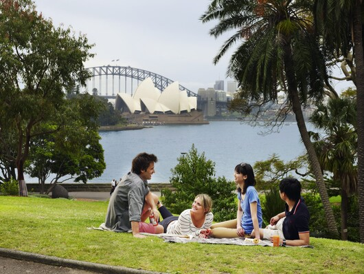 a group of friends enjoying a picnic in the Sydney Botanic Gardens, overlooking Sydney harbour.