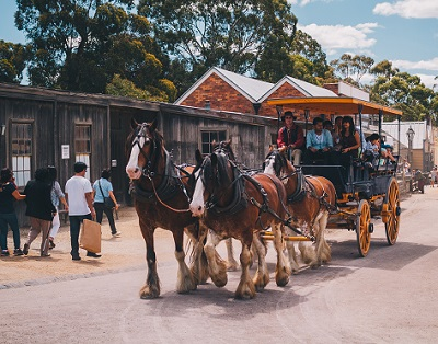 a horse and carriage ride at the old gold mining town of Ballarat