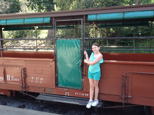 a little girl standing on the step of the Puffing Billy steam train