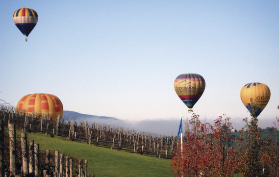 hot air balloons flying over theDe Bortoli Wine Estate in theYarra Valley.