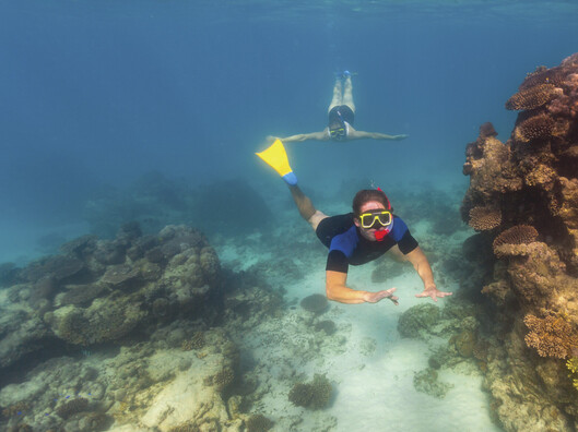 A person snorkelling at Ningaloo Reef.